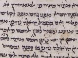 MS. Pococke 236 fol. 19r