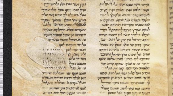 MS. Canon. Or. 60 fol. 7r